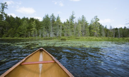 Travels with canoe