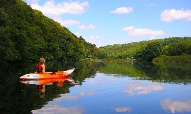 Lopwell Dam, Lopwell Wood, Devon