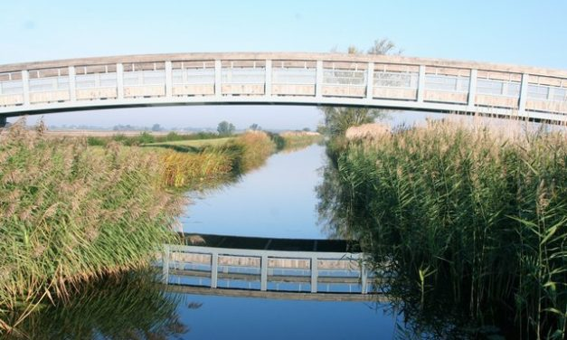 Reach Lode – Wicken Fen, Cambridgeshire