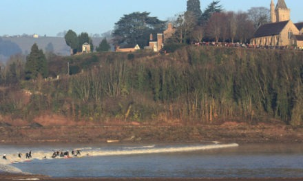 "Severn Bore – Fretherne<input type=""hidden"" class=""is-post-family-safe"" value=""true"">"