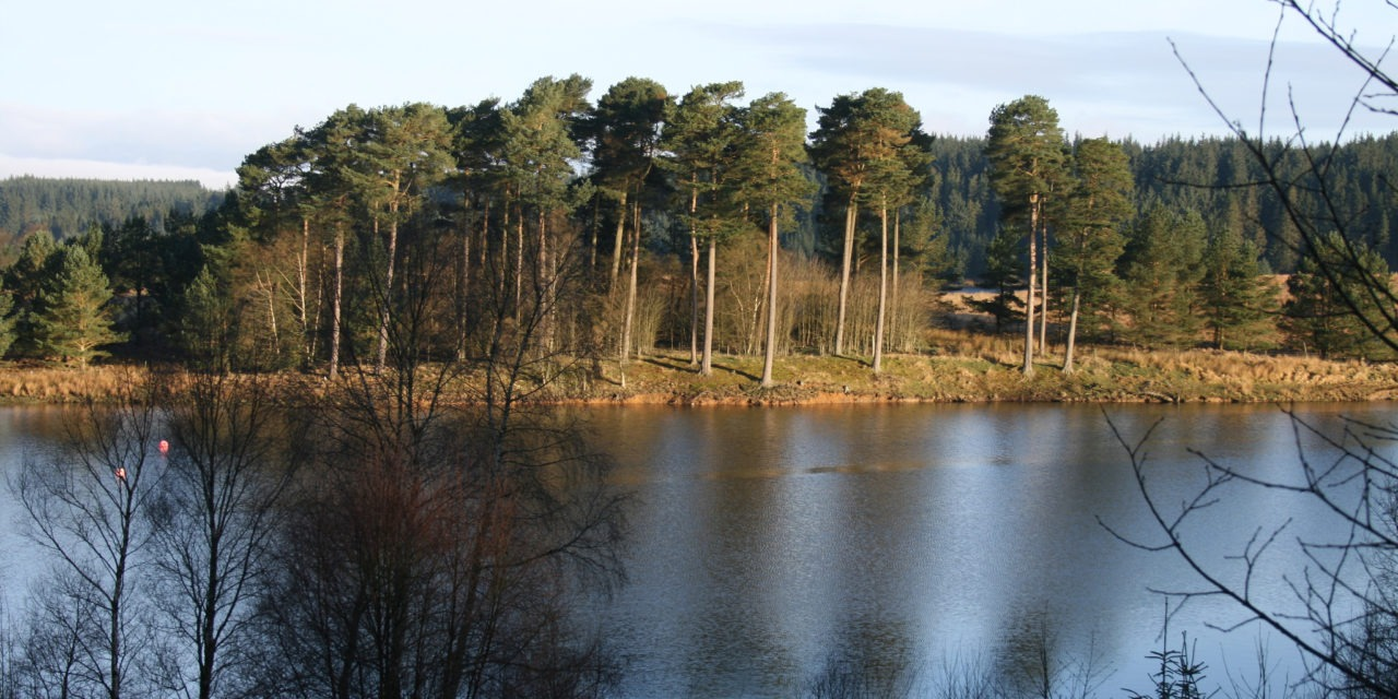 "Kielder Water, Northumberland<input type=""hidden"" class=""is-post-family-safe"" value=""true"">"
