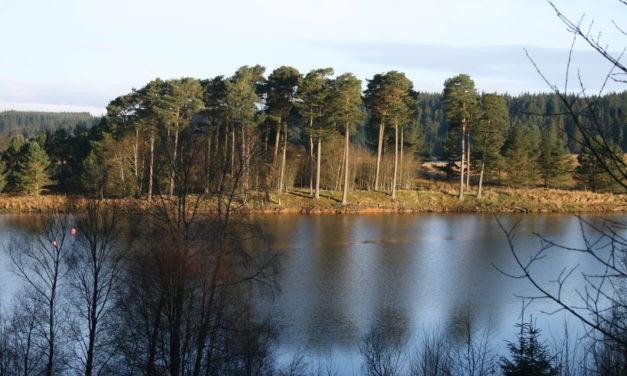 Kielder Water, Northumberland