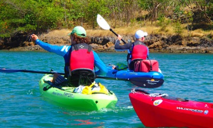 """Spice Island kayaking – Grenadian paddling vibes<input type=""""hidden"""" class=""""is-post-family-safe"""" value=""""true"""">"""
