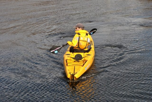 essential paddle strokes