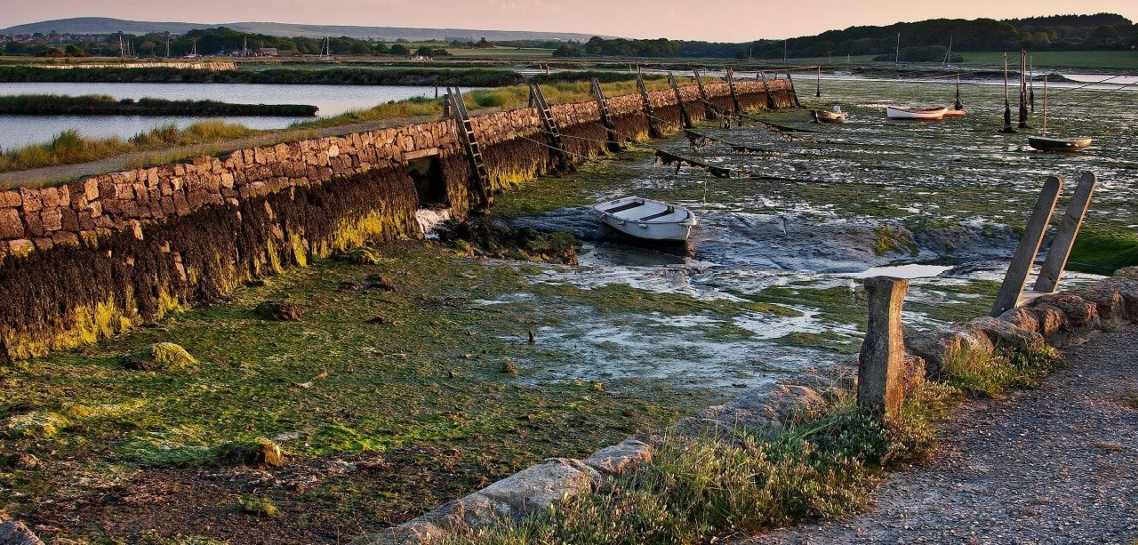 Newtown Estuary, Isle of Wight